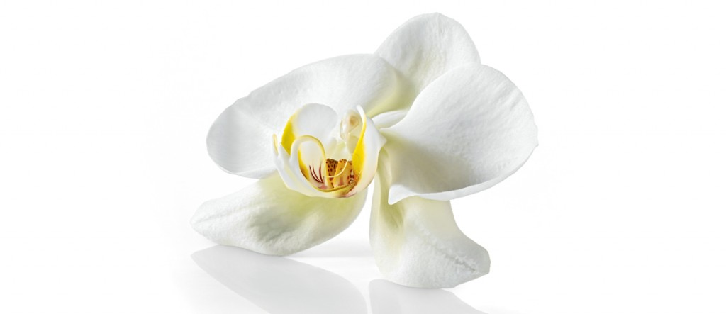 Perfuma tu armario con bolsitas aromáticas.