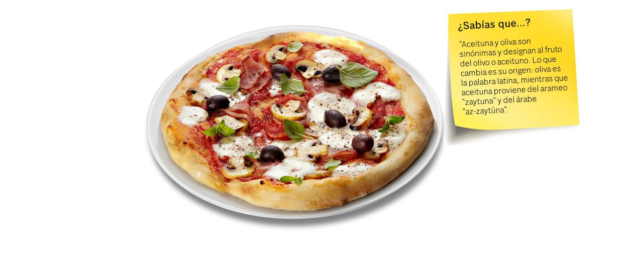pizza-aceituna-oliva-bosch-vs03