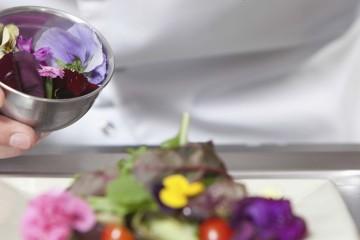 Añade a tus platos un toque de color con flores comestibles