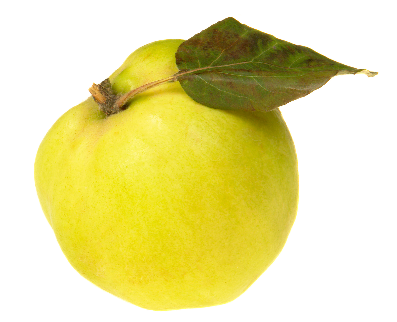 El membrillo es una fruta que se come en los últimos días de otoño.