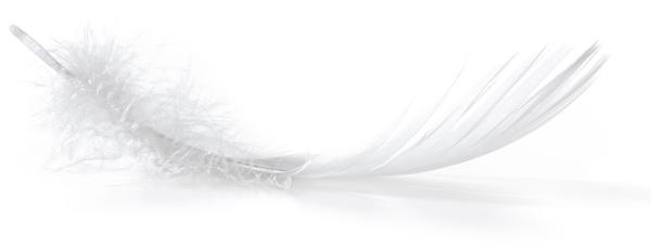 Pon los edredones de plumas en la lavadora