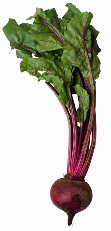 Nutrientes remolacha