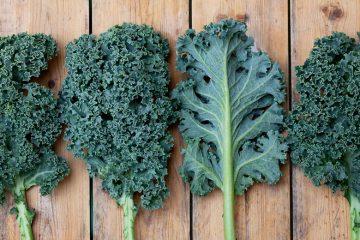 El kale, un nuevo superalimento