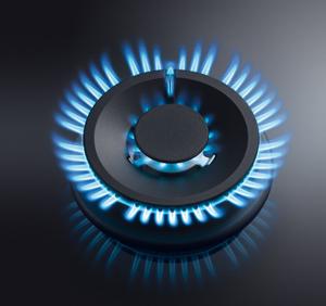 Regulación de la llama de la placa de gas