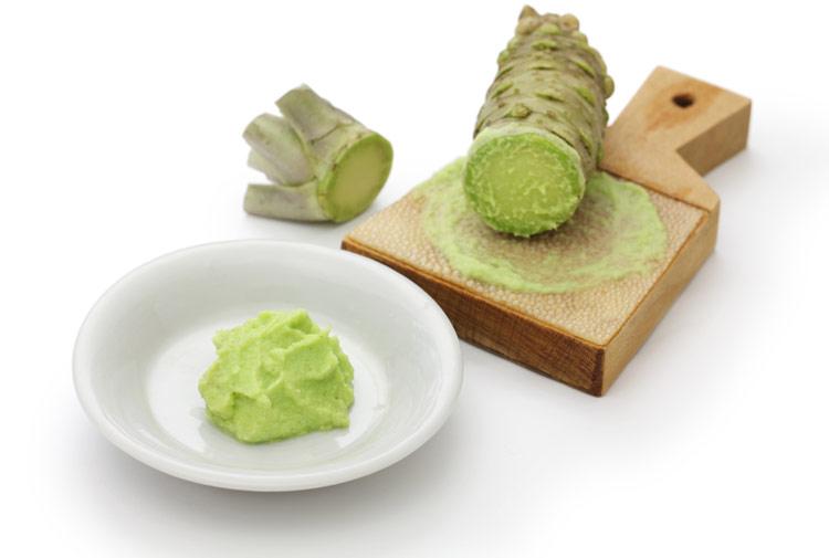 Planta de wasabi